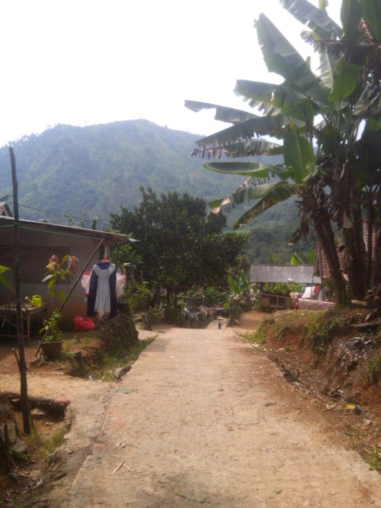 jalan masuk sampai lokasi kebun
