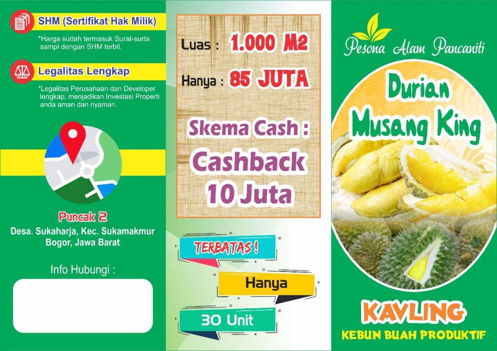 brosur pesona alam pancaniti kavling kebun durian musang king produktif di puncak 2 sukamakmur