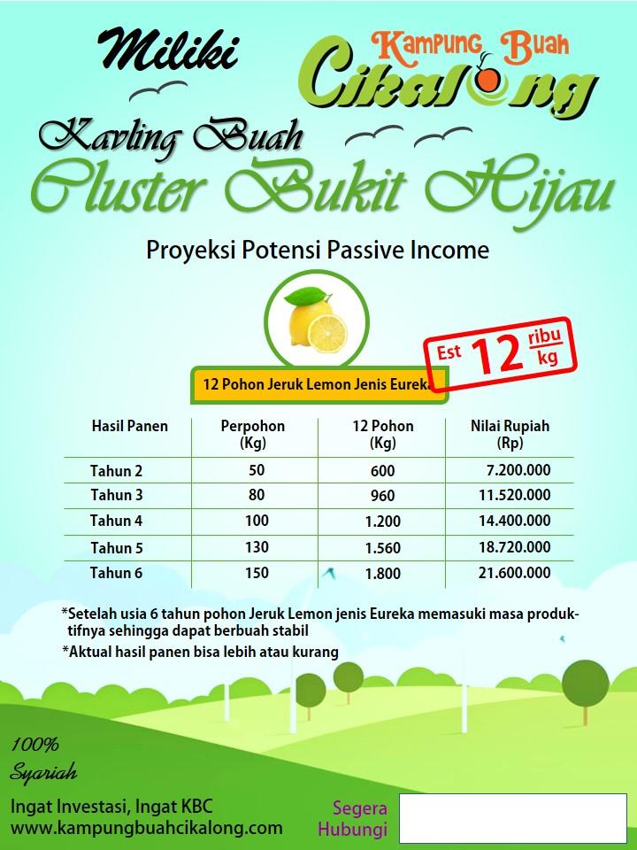 Proyeksi Passive Income dari 12 Pohon Jeruk Lemon Eureka di Cluster bukit hijau kampung buah cikalong