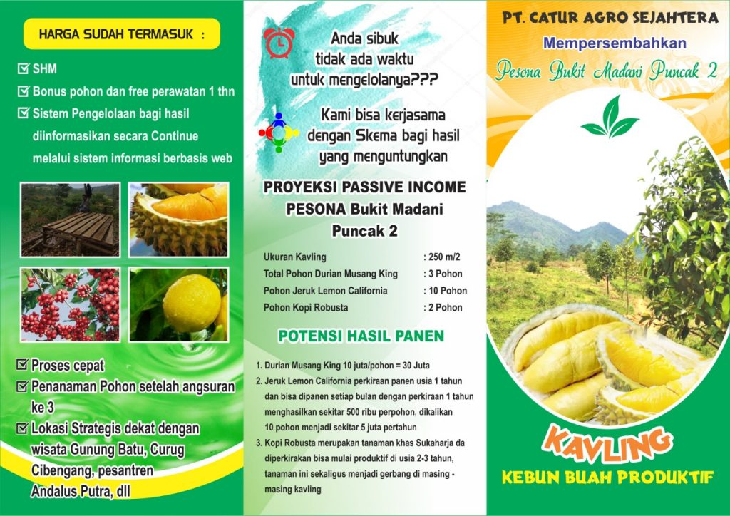 brosur kavling kebun durian musang king bukit madani puncak 2
