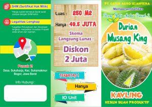 brosur kebun durian bukit madani