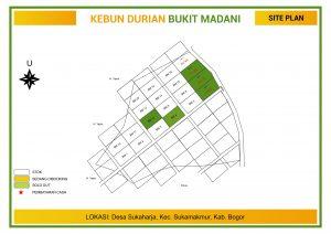 update stok kavling kebun durian bukit madani puncak 2