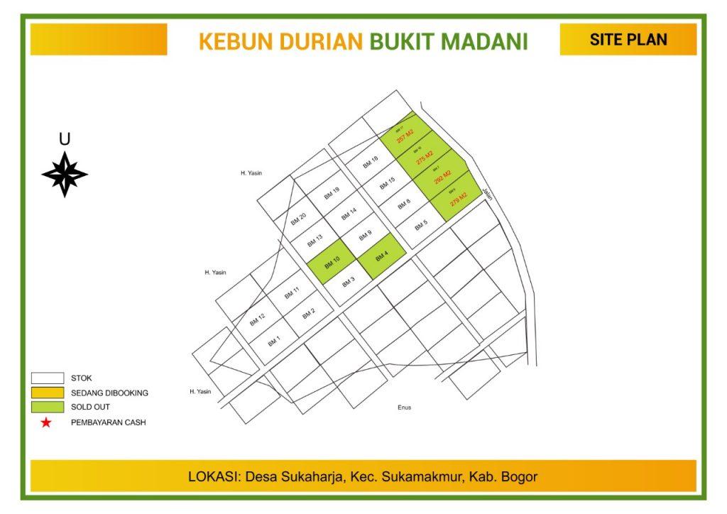 update stok kavling kebun durian bukit madani sukaharja sukamakmur bogor puncak 2