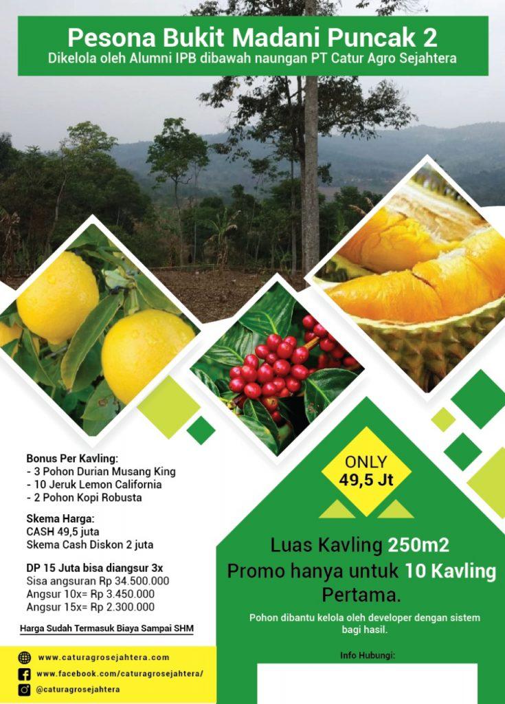 brosur kebun durian pesona bukit madani