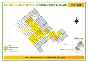 update stok perkebunan terpadu kebun durian musang king dan bawor pesona bukit madani