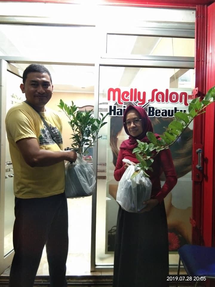 pembeli bibit durian musang king di toko jual bibit di cileungsi bogor