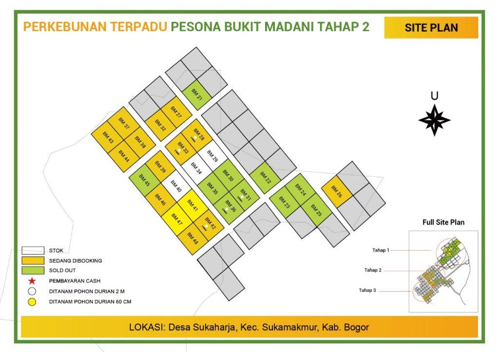 update stok perkebunan durian pesona bukit madani bogor