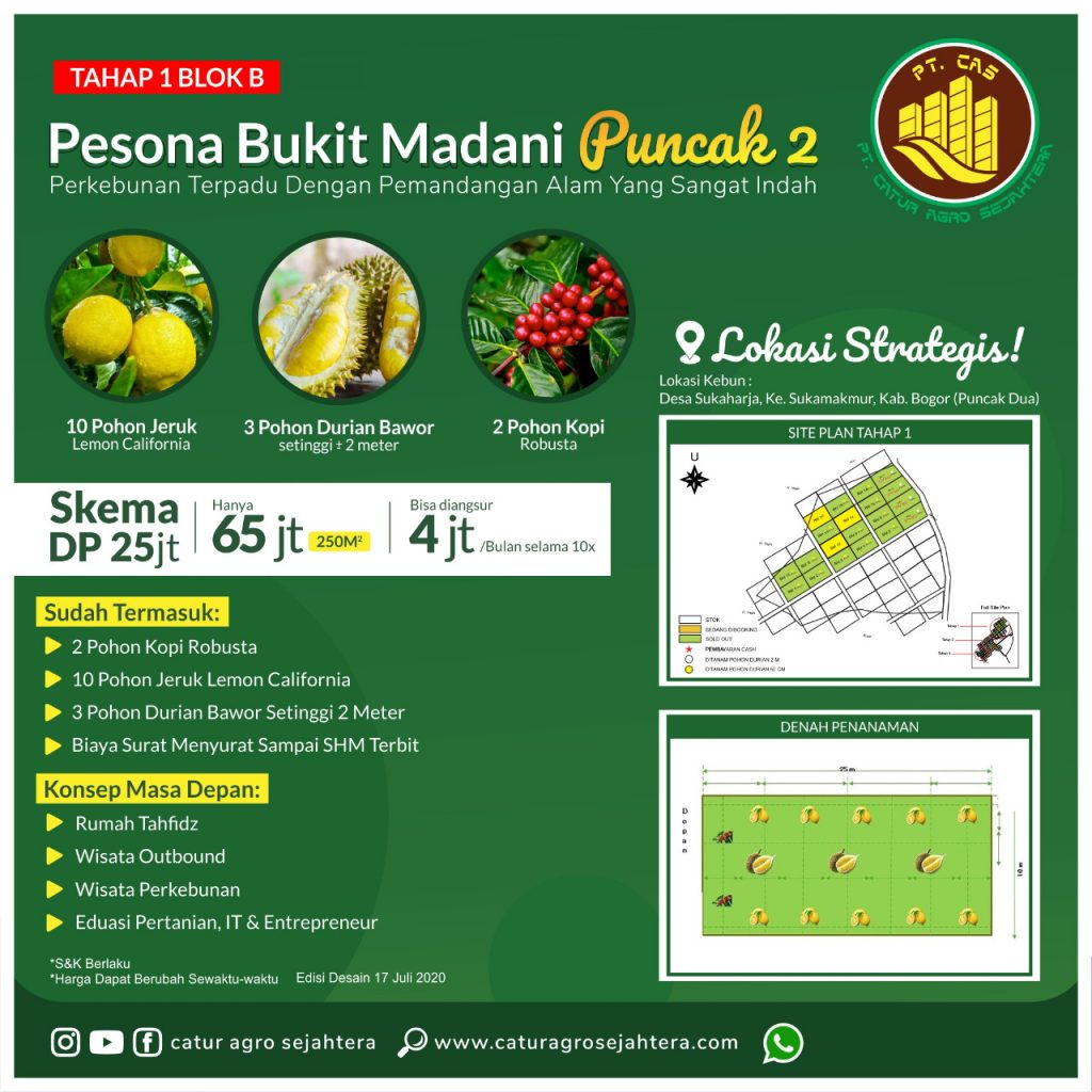 brosur kebun durian pesona bukit madani tahap 1