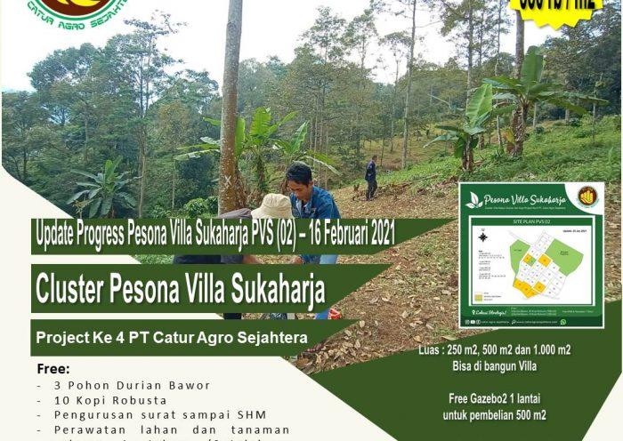 Jual Kebun Durian Musang King dan Bawor di Kebun Durian Pesona Villa Sukaharja Puncak Dua